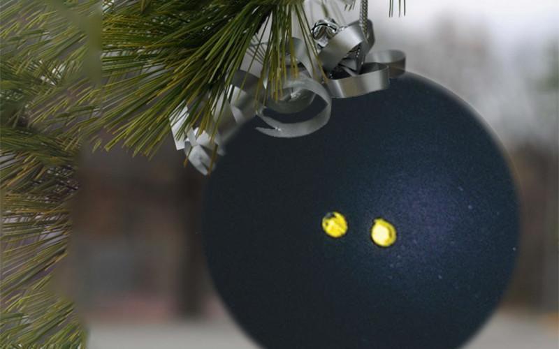 15-12-24-squash-christmas-800-500